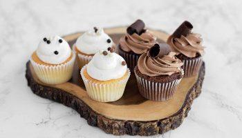 cupcakes-opt